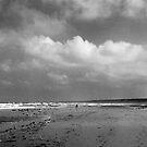 Omaha Beach by Susan Chandler