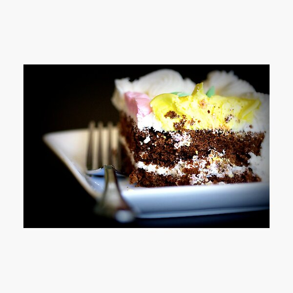 The Last Piece of Cake Photographic Print