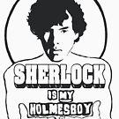 Sherlock is my Holmesboy. by ToruandMidori