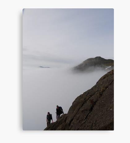 Great Gully Canvas Print