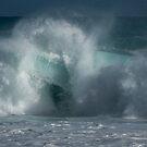 Trap Door _ Hawaiian Surf by Barbara Burkhardt