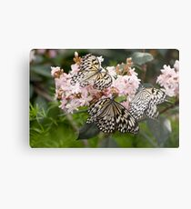 A Butterfly Party Metal Print