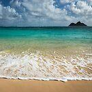 Dream On in Hawaii by Barbara Burkhardt