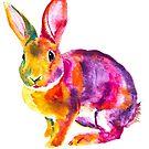 Rabbit 1-Watercolor by Beau Singer