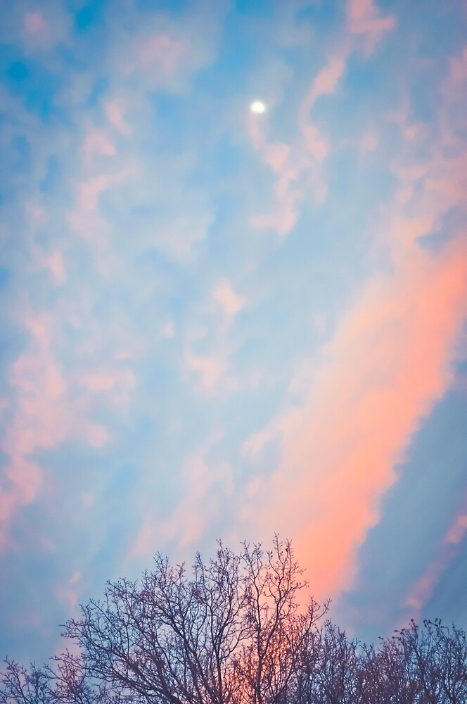 Cotton Candy Sky by HDodson