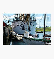 The Barque Picton Castle Photographic Print