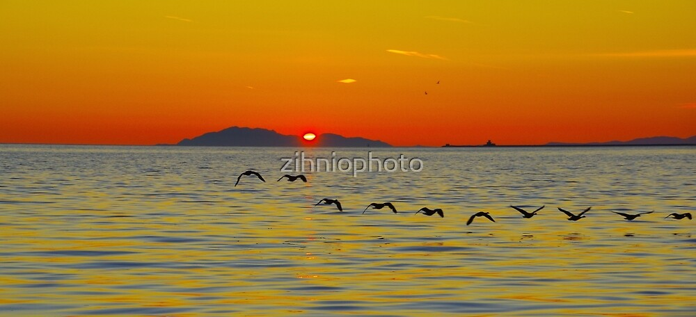 Orange Sky by zihniophoto