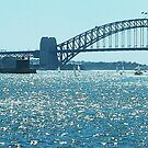 Sydney Harbour yet again (Australia) by BronReid