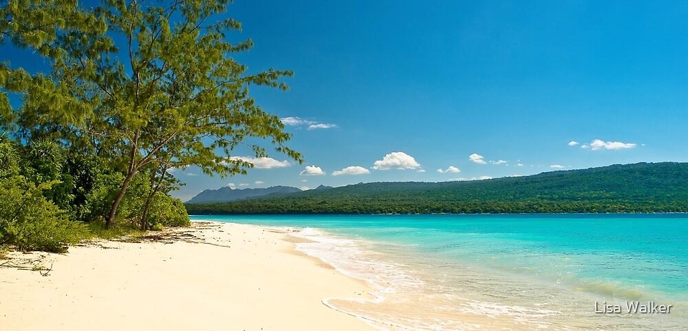 Jaco Island, Timor-Leste by Lisa Walker