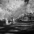 Memory lane by Chris Dowd