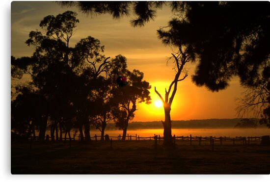 Rural sunrise by Kerry  Hill