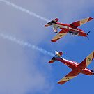 Upsidedown Roulettes by Stecar