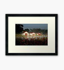 The Boatsheds Framed Print