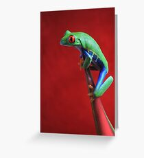 Little red eyes Greeting Card