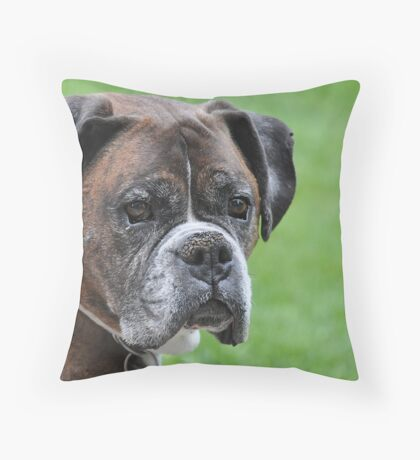Tyson at 10 Throw Pillow