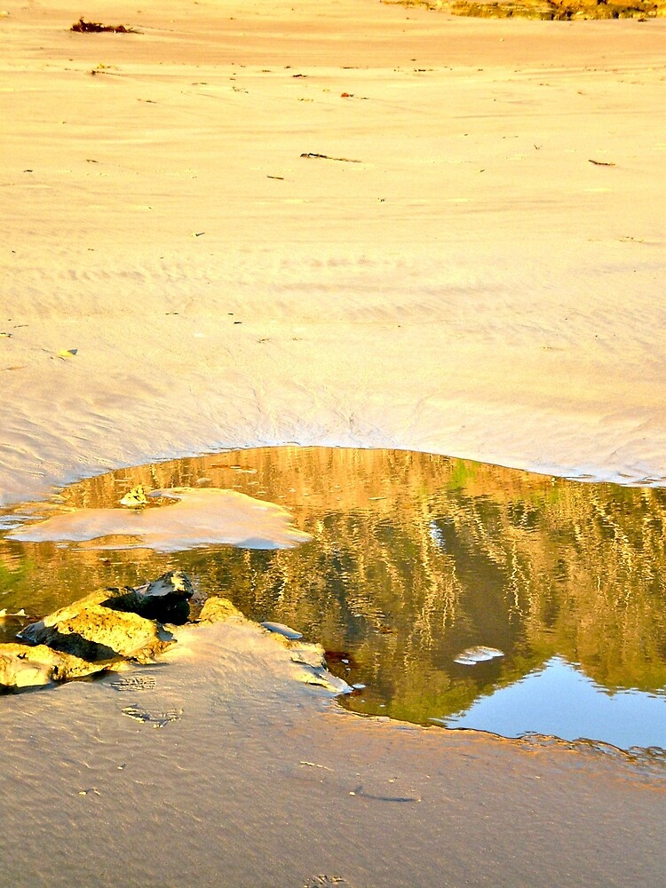 Reflection on Sand by elainedesterre