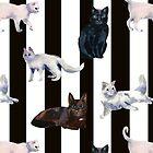 Katzen von Irina Reznikova