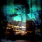 Sunset Harmonica Player by Virginia McGowan