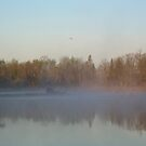 Dawn Fog over Mississippi river by NiftyGaloot