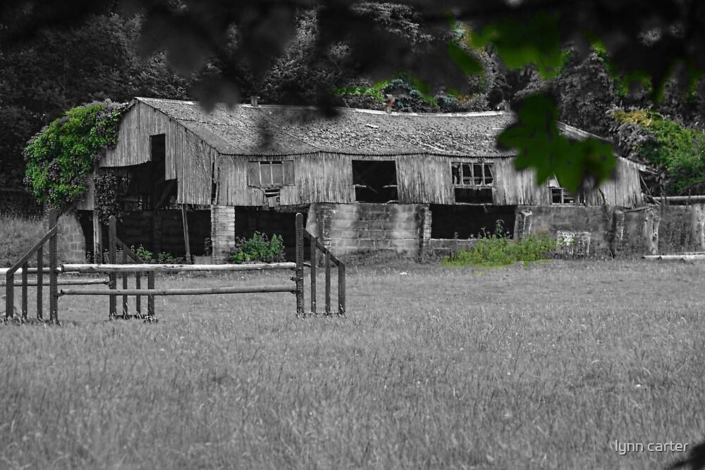 Old Barn by lynn carter