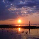 Kariba Sunset by Antionette