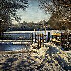A Snowy Day In Tidmarsh by IanWL