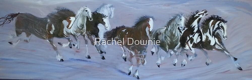Chinese Horses by Rachel Downie