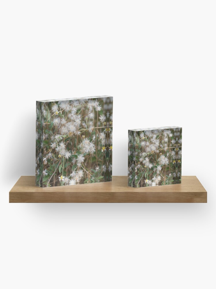 Alternate view of Natural beauty  Acrylic Block
