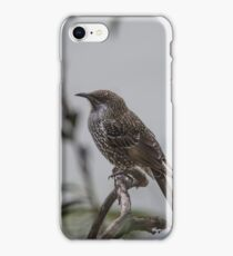 Wattle Bird iPhone Case/Skin