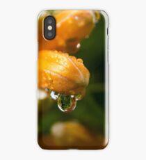 Trumpet Vine Blossoms in the Rain iPhone Case/Skin