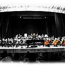 Ludwig Conducts by Al Bourassa
