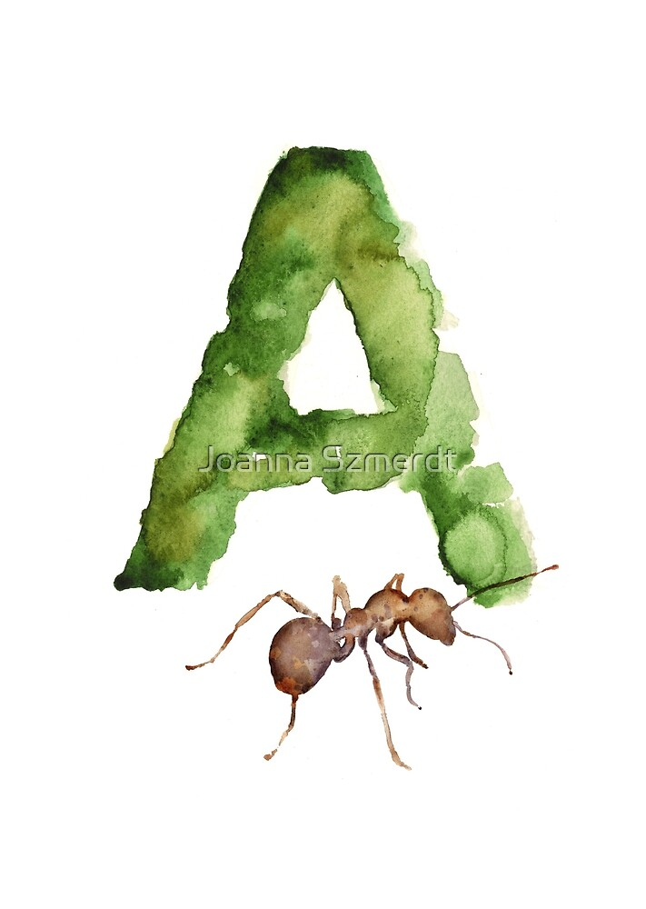 Ant watercolor alphabet painting by Joanna Szmerdt