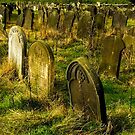 Neglected Graves by SWEEPER