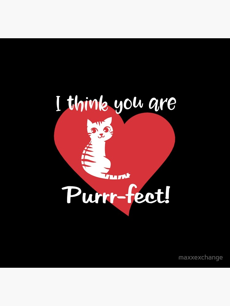 Valentines Day Cat, Kitten Lovers Gift. by maxxexchange