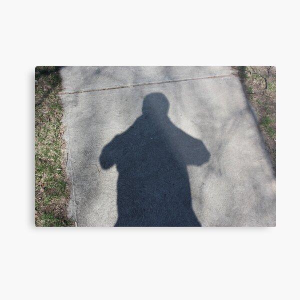 my Friend, my Shadow Metal Print