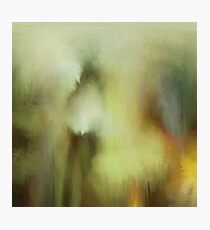 Abstraction THREE Photographic Print