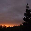 Sunset in Ironbridge, Ontario, Canada by Stephen D. Miller