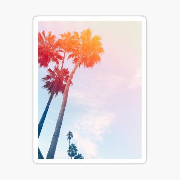 Palm Bright  Sticker