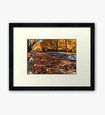Mount Wilson The Glorious Colours of Autumn II NSW Australia Framed Print