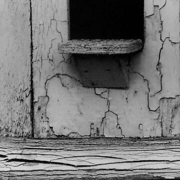 Cracked. by TobiasRosetta