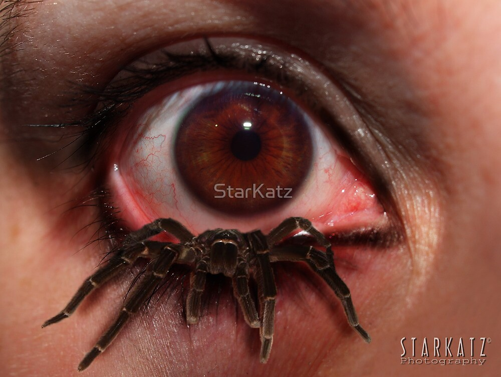 ~TERROR~ by StarKatz