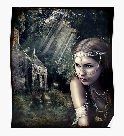 Woodland home Poster