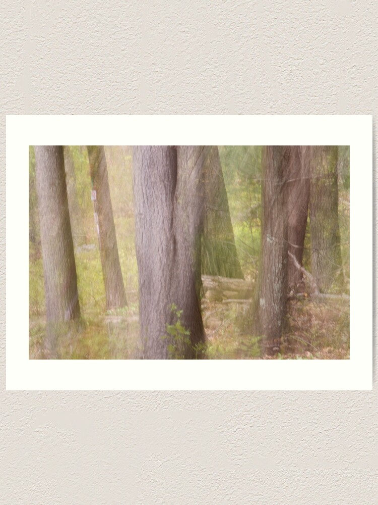 Alternate view of Ghostly Spring Forest Art Print