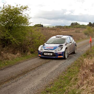 Rally of The Lakes 2010 - Craig Breen by DataStream