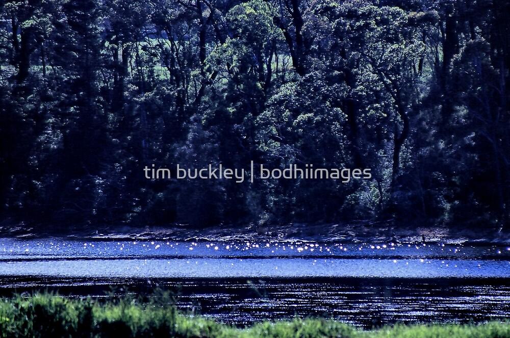 wallaga lake. southeast nsw coast by tim buckley | bodhiimages