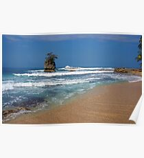 Sandy beach with rocky islet Poster