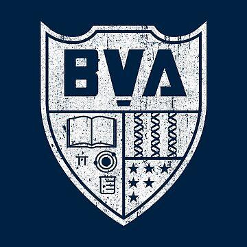 Brooklyn Visions Academy Wappen (Variante) von huckblade