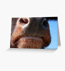 Whose Nose Greeting Card