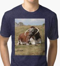 english longhorn Tri-blend T-Shirt
