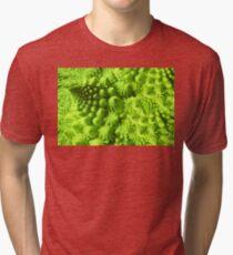Romanesco broccoli  Tri-blend T-Shirt